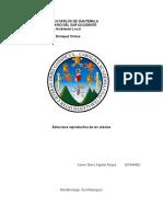 LAB 3 Estructura reproductiva de los arboles.docx