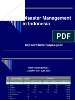 Indonesia Disaster Management