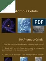_Biomoléculas.pdf
