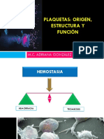 PLAQUETAS MEGACARIOPOYESIS Y HEMOSTASIA PRIMARIA