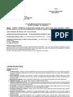 1.Plan  propriu ssm-santier v1 - Bd.Timisoara - model