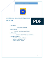 GEOLOGIA LLACANORA.docx