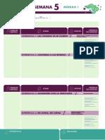 Contenido en PDF - Año 1 - Módulo 1 - Semana 5 - Viajeros del Pentagrama