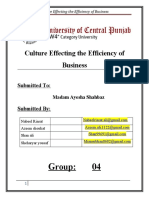 Culture Effecting the Efficiency of