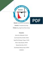 AE Practica 1.pdf