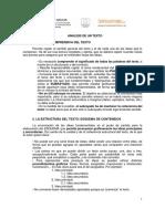 analisistexto.pdf