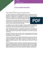 PerezVillada_EderIsaac_M09S3AI6