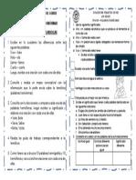 4° PALABRAS HOMONIMAS SEMANA 3 DE MARZO.pdf