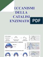 Meccanismi di catalisi enzimatica