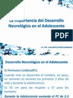 La Importancia del Desarrollo Neurológico en el Adolescente