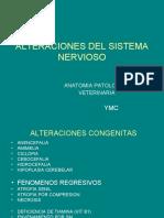D.ALTERACIONES DEL SISTEMA NERVIOSO