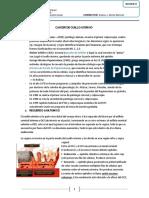 G1 Historia natural del cáncer de cérvix uterino. Disp