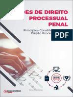 33201765-principios-constitucionais-do-direito-processual-penal (1)