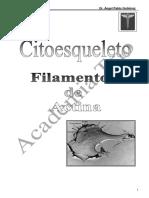 Citoesqueleto-Filamentos de Actina.pdf