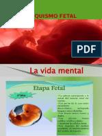 POWER psiquismo fetal 2