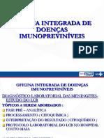 PALESTRA  liquor Marcelo Teles def.pdf