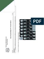 GUIA_3 fases de la luna.pdf