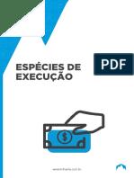 ESPECIES DE EXECUÇÃO