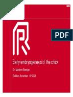 2008 Boerjan embryogenesis