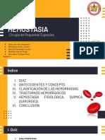 Hemostasia, Grupo 1.pdf