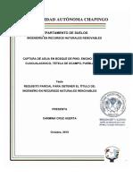 CAPTURA DE AGUAENBOSQUE DE PINO ENCINO DE CUACUALACHACO, TETELA DE OCAMPO PUEBLA