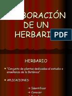 ELABORACIÓN DE UN HERBARIO