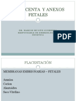 EMBR-4-PLACENTA-Y-ANEXOS-FETALES-MUNIVE