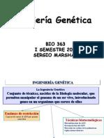 Ing.Geneticafundamental20I9