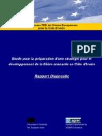 Etude_pour_la_preparation_d_une_strategi (2).pdf