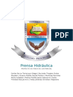 FIS. Prensa Hidráulica.docx