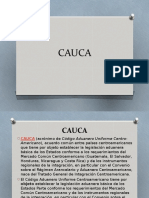 CAUCA.pptx