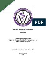 criptorquidismo importancia diagnostico tempran y cirugia.pdf