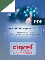 Collaborateur-2020