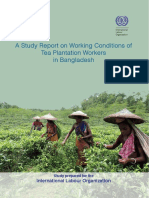 The Study Report on Working Conditions of Tea Plantation Workers in Bangladesh