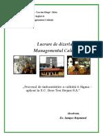 Managementul Calitatii - Procesul 6 Sigma La Bere Trei Stejari