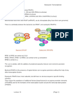 MBII - L19 - Transcription 3 - Eukaryotic Transcriptional Machinery