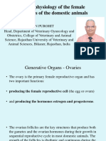 Functional Physiology of the Genital Organs of the Domestic Animals