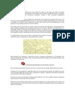 Lectura 06_1_Curvas de Nivel - Ortofoto