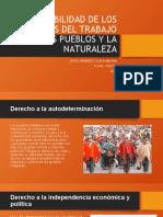 VULNERABILIDAD DE LOS DERECHOS DEL TRABAJO LOS PUEBLOS - JORGE  SILVA.pptx