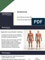 Uniminuto Anatomía 6