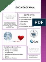 Infografía_IntEmocional_AGSotelo
