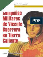 Vicente Guerrero en la Tierra Caliente