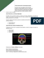 101994783-Fracturas-de-Region-Craneomaxilofacil.doc