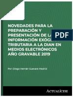 Libro digital - Novedades para la preparación y presentación de la Información exógena tributaria a la DIAN en medios electrónicos Año gravable 2019