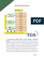 3 - TGS premisas y antecedentes
