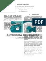 INFORME FRICCION TERMINADO.docx