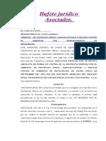 Apelacion Especial Por Motivo de Forma BYRON GERARDO Y JUCA