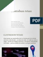Clostridium tetani expo