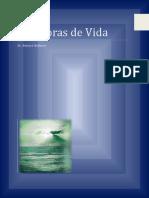 3Metáforas_de_VidaBlankSpanishApril2014-