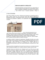 CONDICIONAMENTO OPERANTE.docx